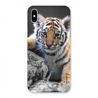 Animal Beauty Back Case for iPhone X